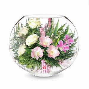 Орхидеи с айвори розами в средней плоской круглой вазе