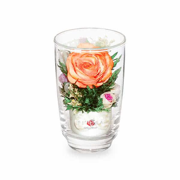 Оранжевая роза с белой лентой в высоком стакане haiku