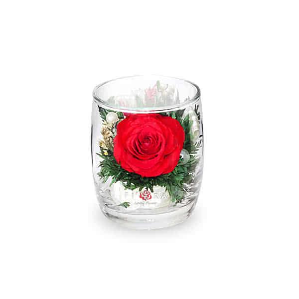 Красная роза с белой лентой в стакане ivory