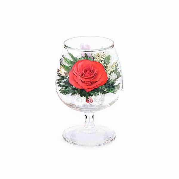 Красная роза с белой лентой в стакане brandy