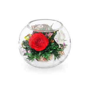 Красные розы и орхидеи с диантусами в малой круглой вазе