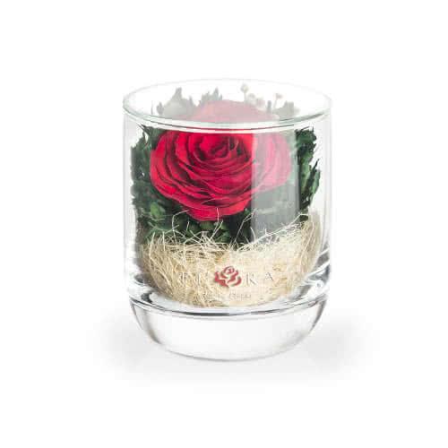 Красная роза в стакане s-top