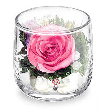 Цветы в стекле (вакууме) - Мини и оригинальные в стакане lyra - 47831