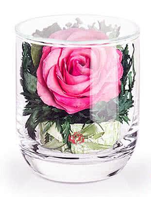 Цветы в стекле (вакууме) - Мини и оригинальные в стакане s-top - 40184