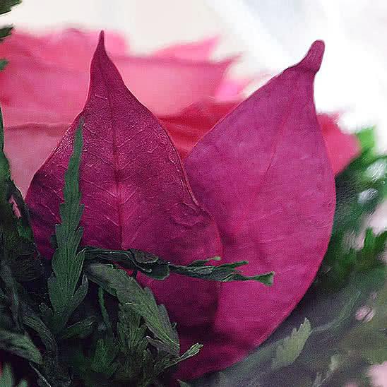 Цветы в стекле (вакууме) - Ярко-розовые и светло-розовые розы в малой круглой вазе - 48470
