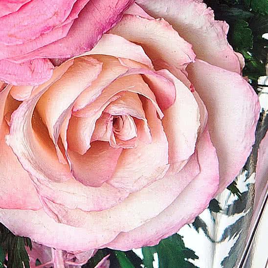 Цветы в стекле (вакууме) - Ярко-розовые и светло-розовые розы в средней круглой со скошенным верхом - 48531