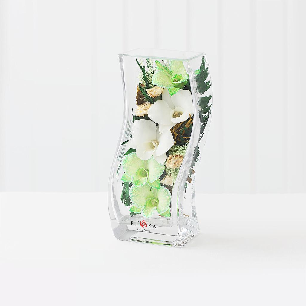 Белые и бело-зеленые орхидеи с диантусами в изогнутой вазе