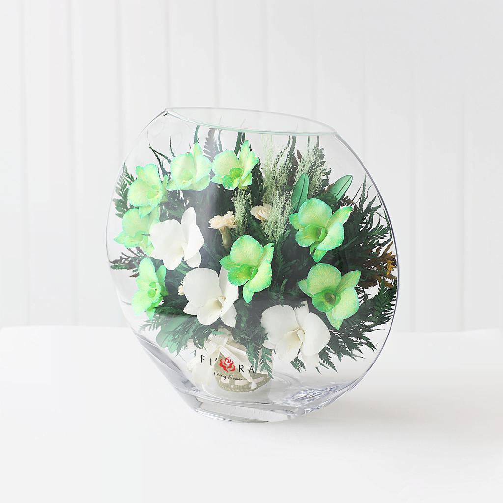 Белые и бело-зеленые орхидеи в средней плоской вазе
