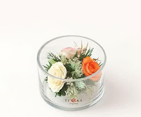 Белые и оранжевые розы в плоском цилиндре