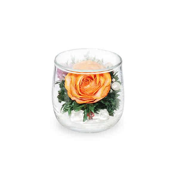 Оранжевая роза в стакане lyra
