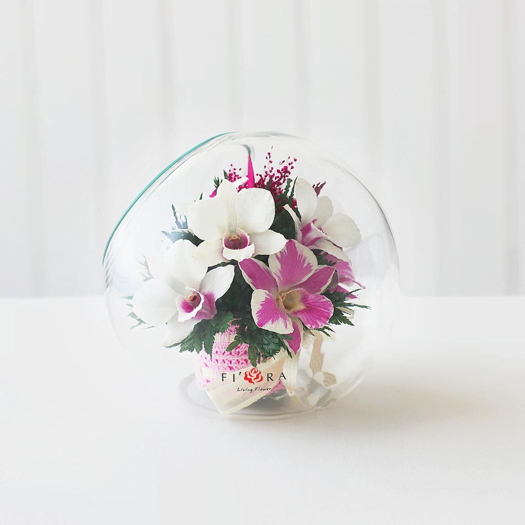 Орхидеи в средней круглой вазе со скошенным верхом