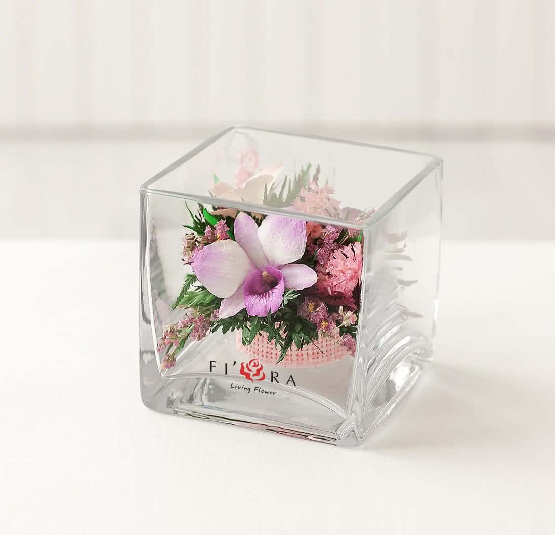 Орхидеи в малой кубической вазе