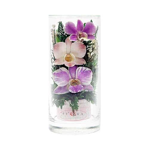 Орхидеи в малом цилиндре