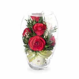 Красные розы в среднем эллипсе