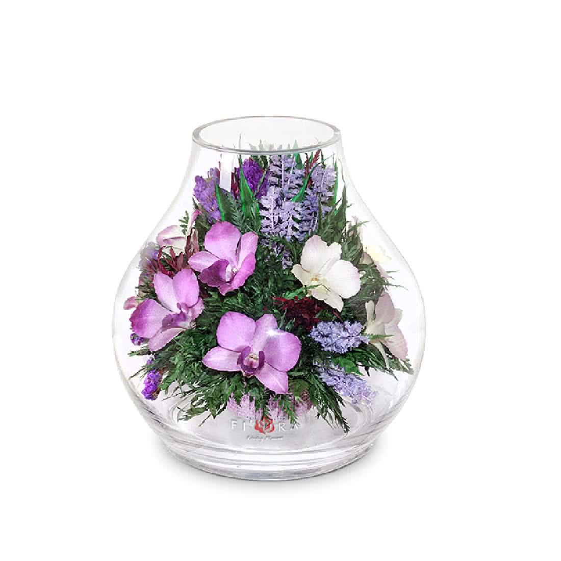 Интернет магазин цветы в вакууме купить, цветов розетта